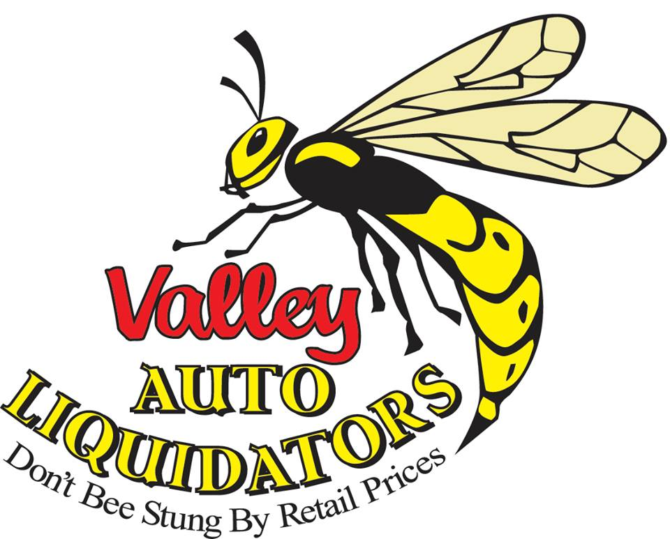Valley Auto Liquidator