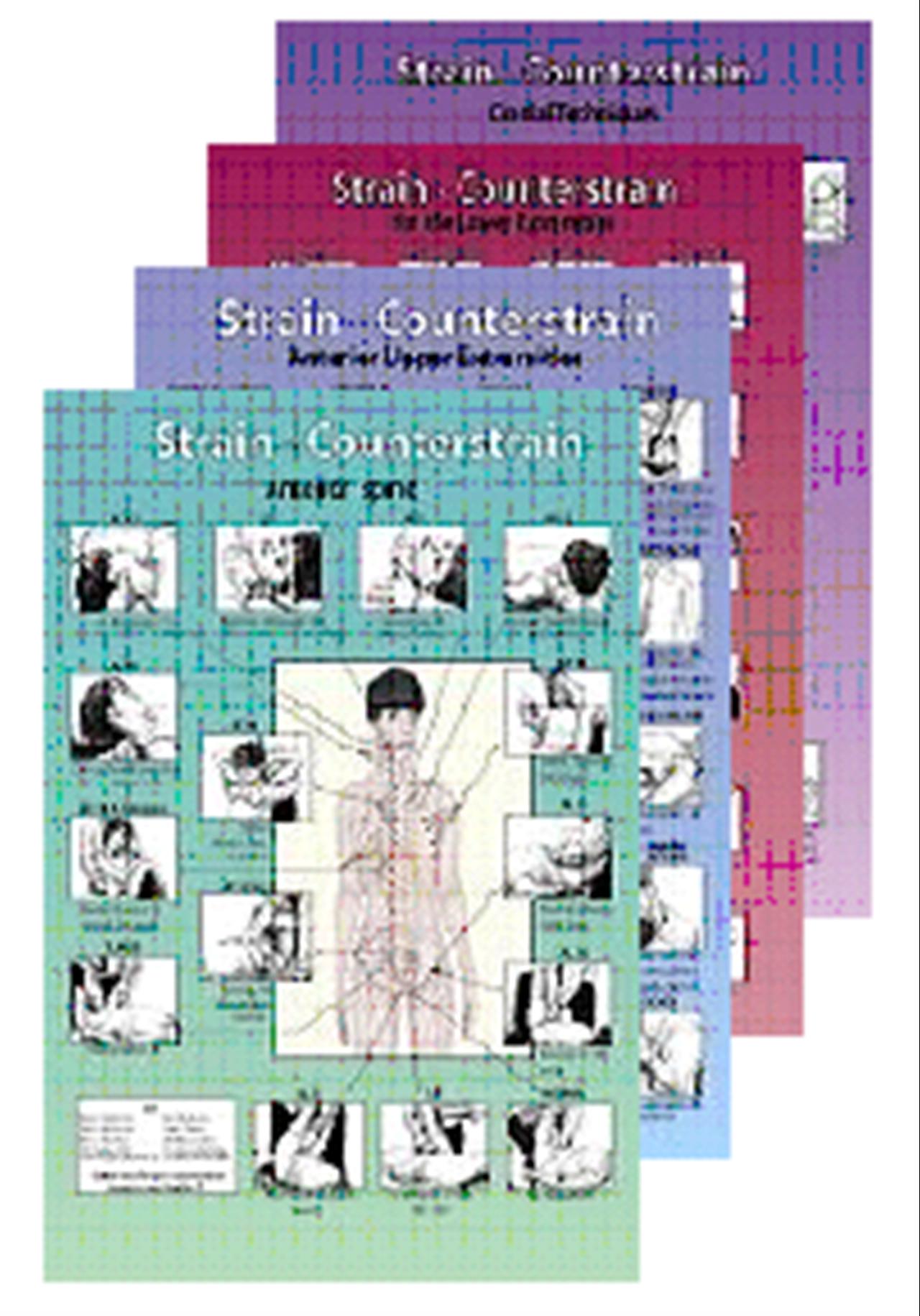 Technique Chart Series