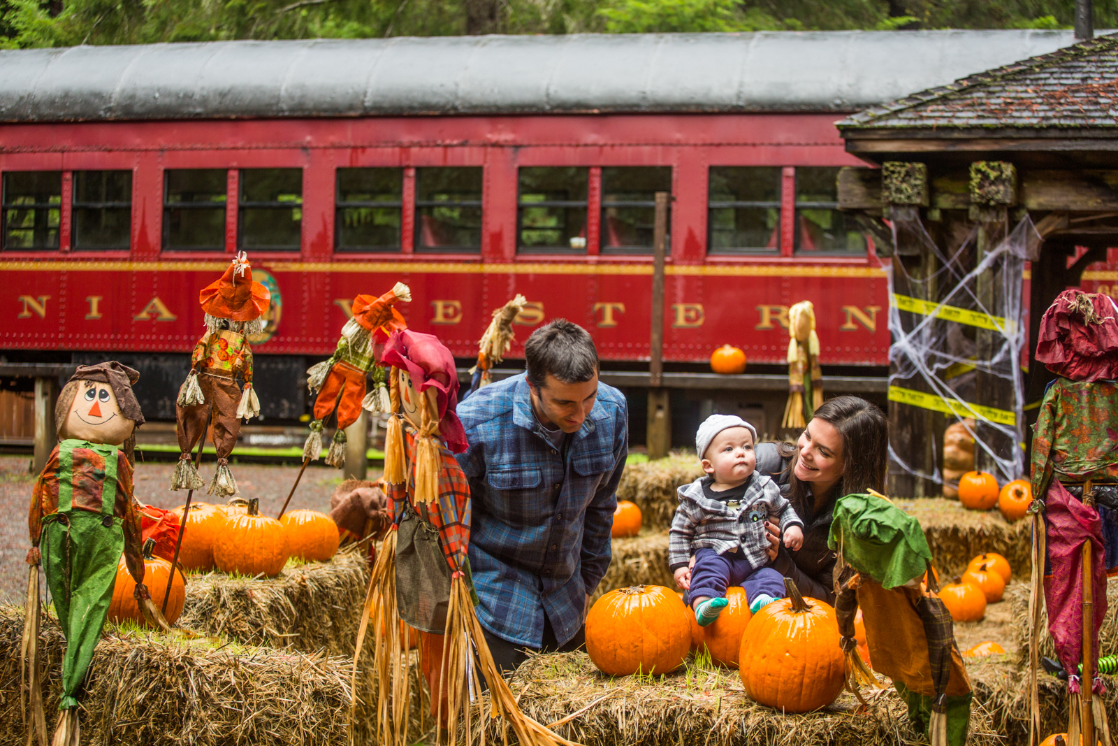 Skunk Train Pumpkin