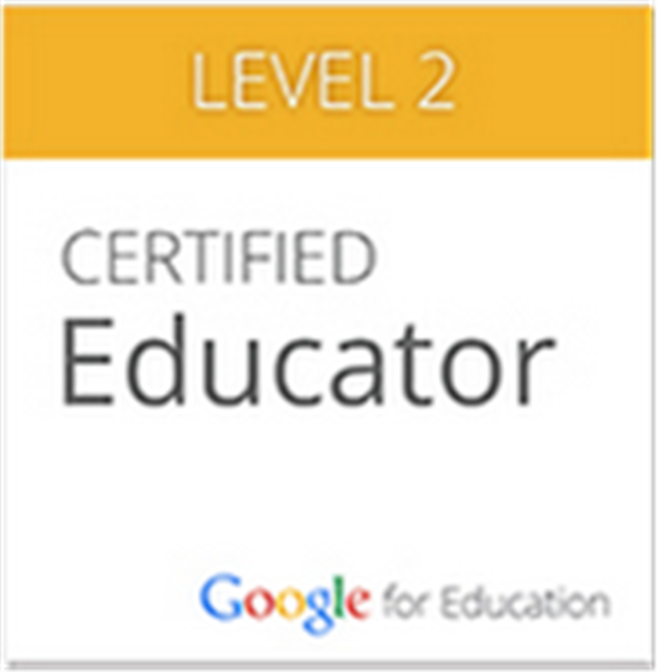 Google Certification Level 2 Bronx Ny