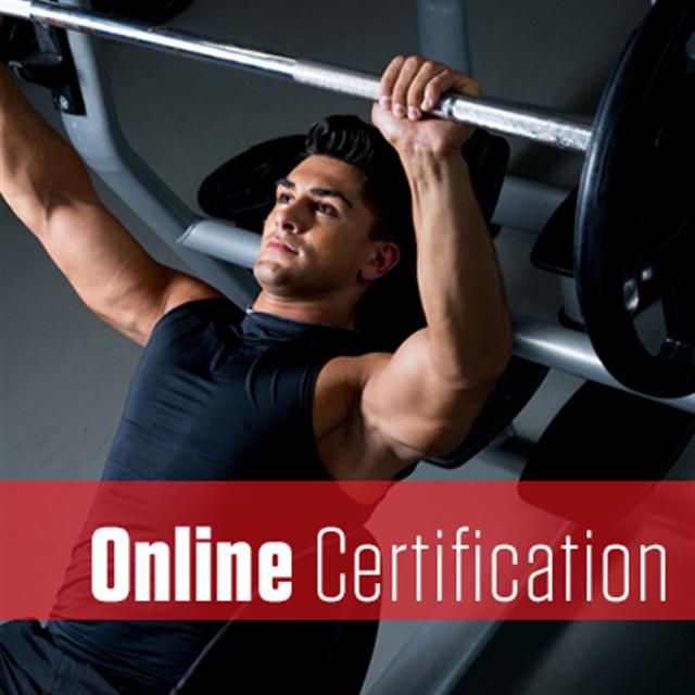 picp level 1 online certification rh poliquingroup configio com