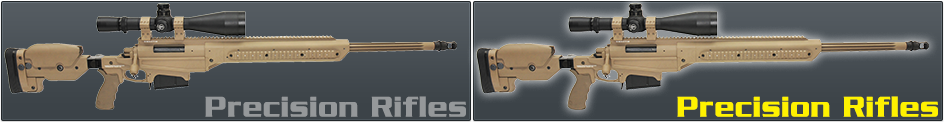 Precision Rifles